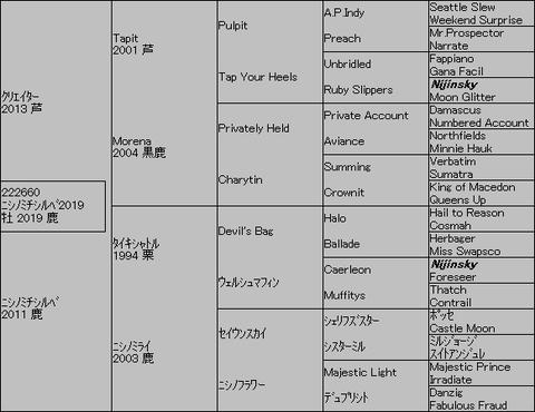 ニシノミチシルベ20195代血統表