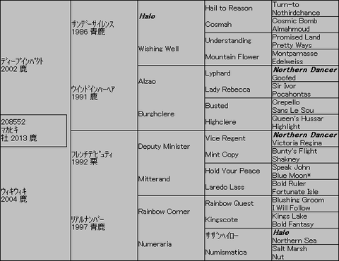 マカヒキ5代血統表