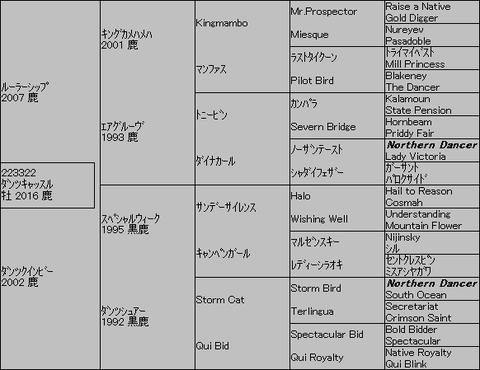 ダンツキャッスル5代血統表