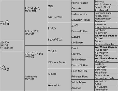 カテドラル5代血統表