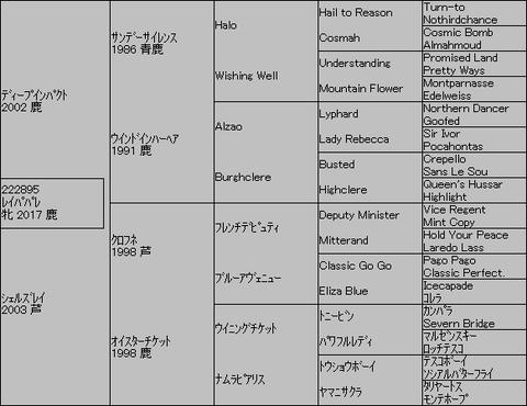 レイパパレ5代血統表