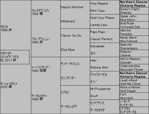 メイショウベンガル5代血統表
