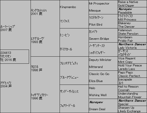 リオンリオン5代血統表
