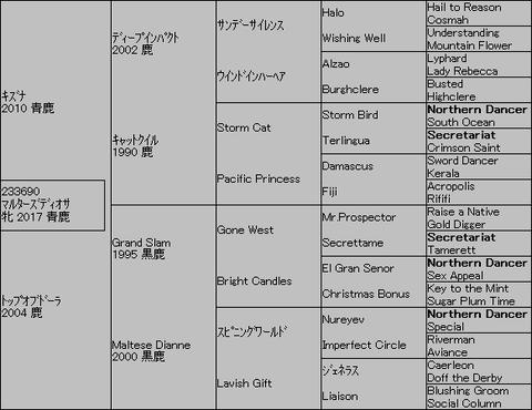 マルターズディオサ5代血統表