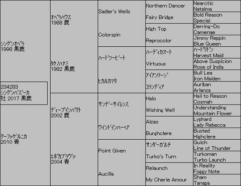 シングンバズーカ5代血統表