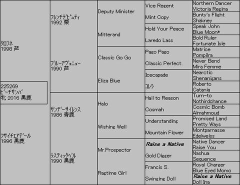 ビーチサンバ5代血統表