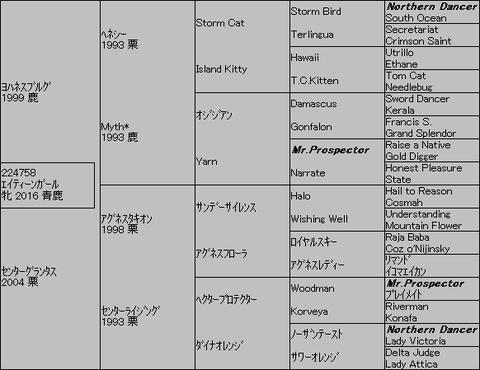 エイティーンガール5代血統表