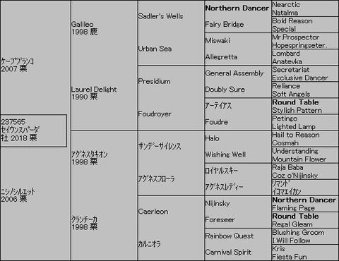 セイウンスパーダ5代血統表