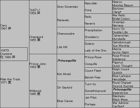 Cozzene5代血統表