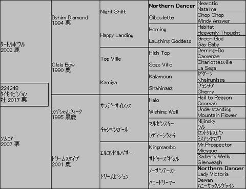 タイセイビジョン5代血統表