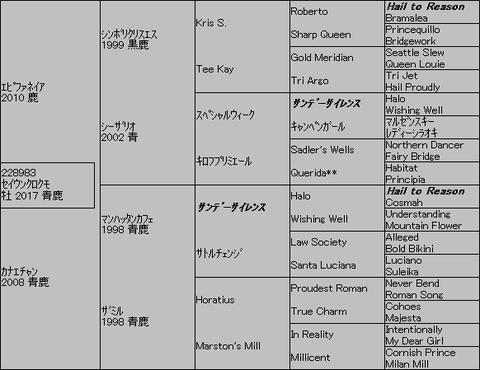 セイウンクロクモ5代血統表