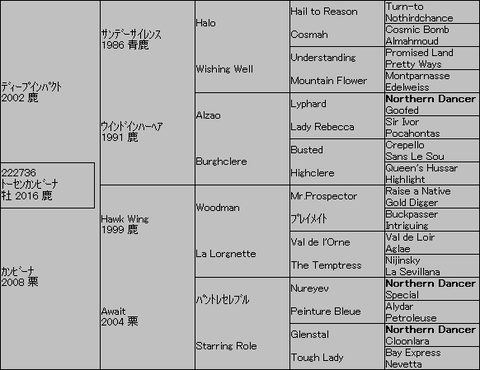 トーセンカンビーナ5代血統表