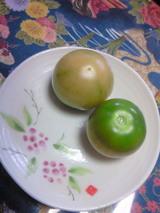 6月青トマト