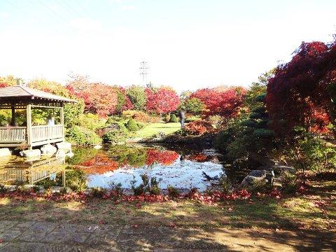 平岡樹芸センター日本庭園