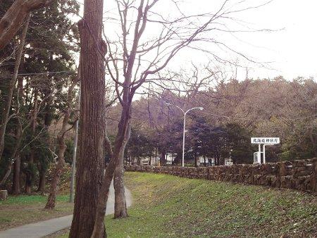 2015春円山公園付近004