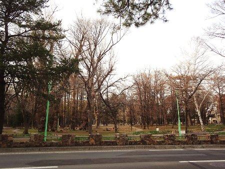 2015春円山公園付近002