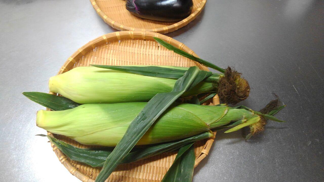 玉蜀黍、とうもろこし、唐黍、もろこし。 : ハックン俳句でしょ ...