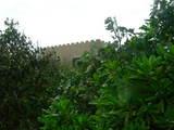 060715lasa-wall