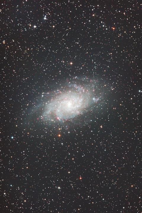 s-M33.2019.10.04.WebⅦ