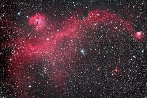 s-R200SSコマコレクターPHによるカモメ星雲.2019WebⅨ