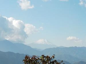 富士山見えました。