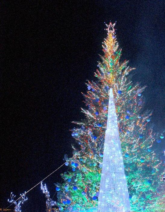 クリスマス-1-7