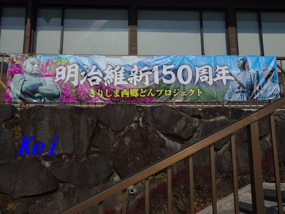 6DSC06023
