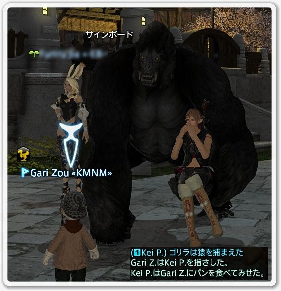 kp008749
