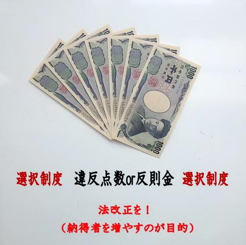 隠れ取締りで 巻き上げられる 7000円 必ず止まりましょうね(2)
