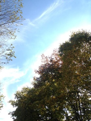 写真 2014-10-10 12 57 36