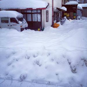 インフルエンザと大雪。