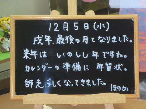 IMG_4629