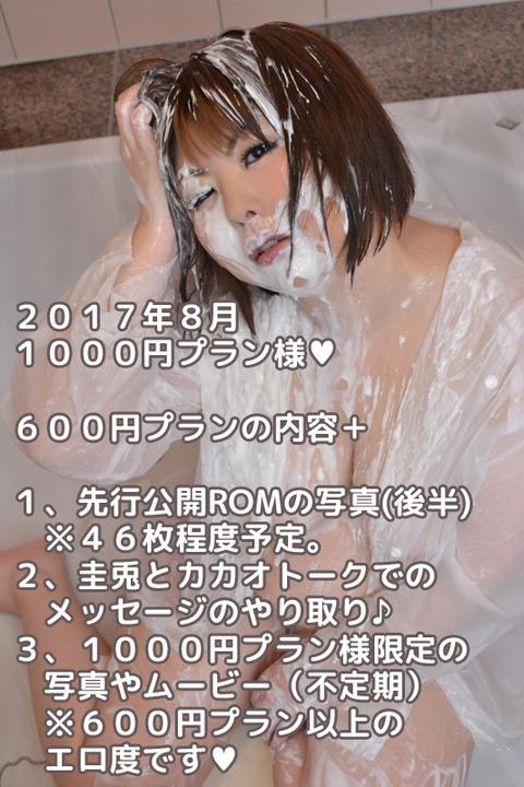 2017.8FC1000円プラン内容