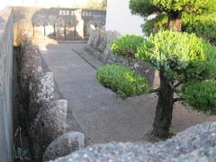 3浄光寺89仏