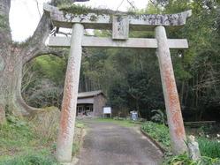 2須賀神社石鳥居、神木、本殿