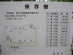 部木八幡楠など保存樹配置図