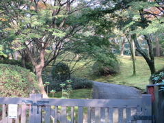2水明荘庭園道