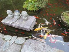 4鎮国寺池の三猿と錦鯉