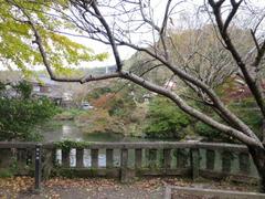 4放生池・厳島神社