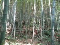 725須多田上ノ口古墳