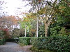 1水明荘前庭P