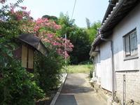728須多田上ノ口古墳入口