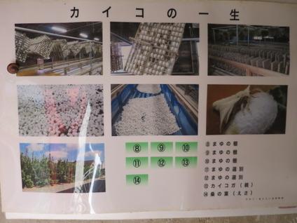 5蚕博物館パネル2