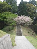 06浪寄神社