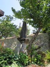 2真武康太墓碑
