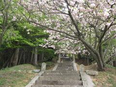 07浪寄神社