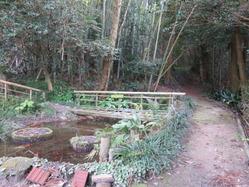 2祇園様の池