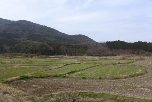 大分県豊後高田市の田染荘モニターツアーに体験参加しました!