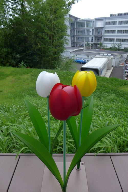九州大学伊都キャンパスイースト地区のあるきかた!