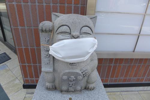 ニャーもなくてもネコんだら困るし・・・・いよいよ徹底マスク社会へ!
